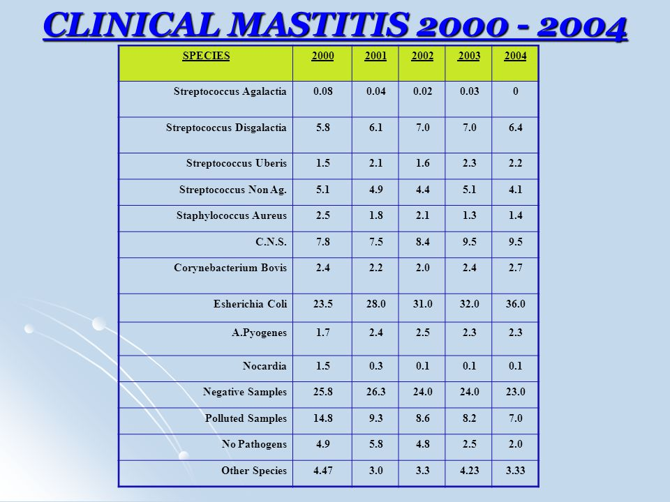 CLINICAL MASTITIS 2000 - 2004 SPECIES20002001200220032004 Streptococcus Agalactia0.080.040.020.030 Streptococcus Disgalactia5.86.17.0 6.4 Streptococcus Uberis1.52.11.62.32.2 Streptococcus Non Ag.5.14.94.45.14.1 Staphylococcus Aureus2.51.82.11.31.4 C.N.S.7.87.58.49.5 Corynebacterium Bovis2.42.22.02.42.7 Esherichia Coli23.528.031.032.036.0 A.Pyogenes1.72.42.52.3 Nocardia1.50.30.1 Negative Samples25.826.324.0 23.0 Polluted Samples14.89.38.68.27.0 No Pathogens4.95.84.82.52.0 Other Species4.473.03.34.233.33