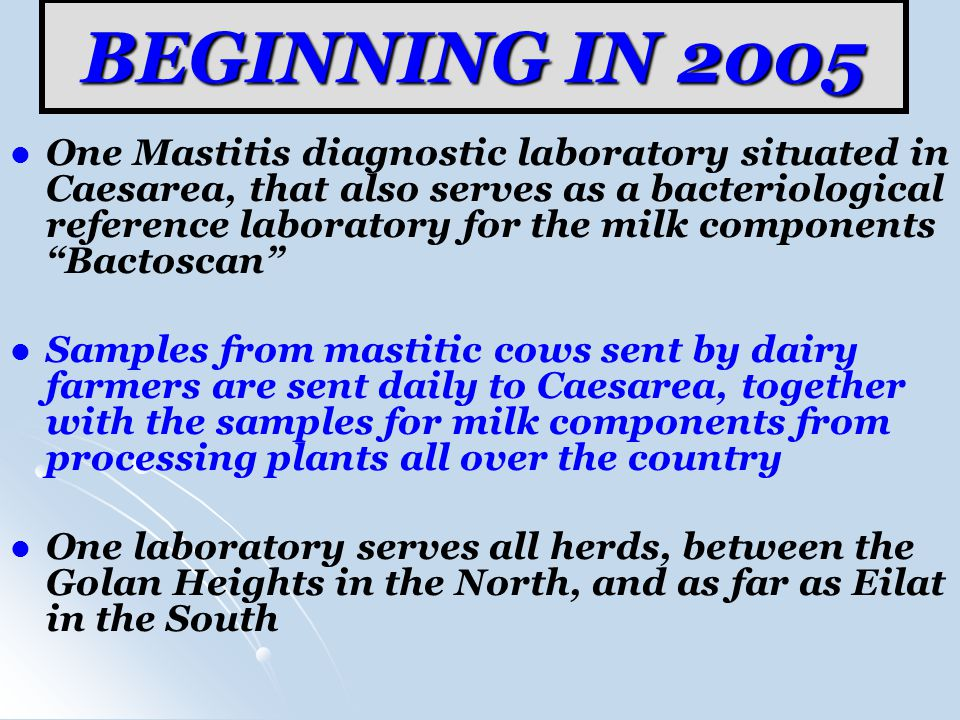 BEGINNING IN 2005 One Mastitis diagnostic laboratory situated in Caesarea, that also serves as a bacteriological reference laboratory for the milk components Bactoscan Samples from mastitic cows sent by dairy farmers are sent daily to Caesarea, together with the samples for milk components from processing plants all over the country One laboratory serves all herds, between the Golan Heights in the North, and as far as Eilat in the South