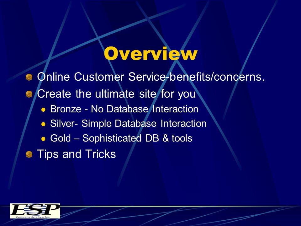 Overview Online Customer Service-benefits/concerns.