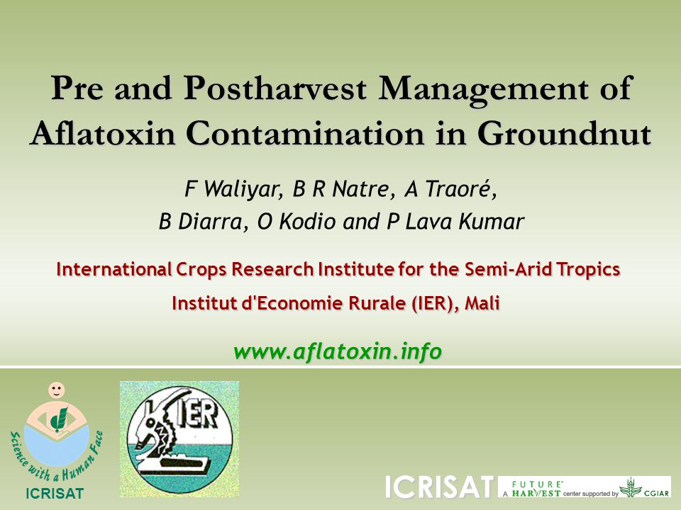 Pre and Postharvest Management of Aflatoxin Contamination in Groundnut F Waliyar, B R Natre, A Traoré, B Diarra, O Kodio and P Lava Kumar International Crops Research Institute for the Semi-Arid Tropics Institut d Economie Rurale (IER), Mali ICRISATwww.aflatoxin.info ICRISAT