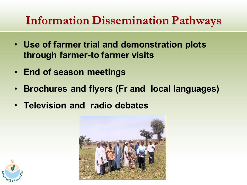 Information Dissemination Pathways Use of farmer trial and demonstration plots through farmer-to farmer visits End of season meetings Brochures and flyers (Fr and local languages) Television and radio debates