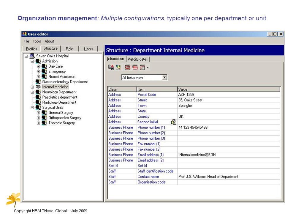Copyright HEALTHone Global – July 2009 Organization management: Multiple configurations, typically one per department or unit