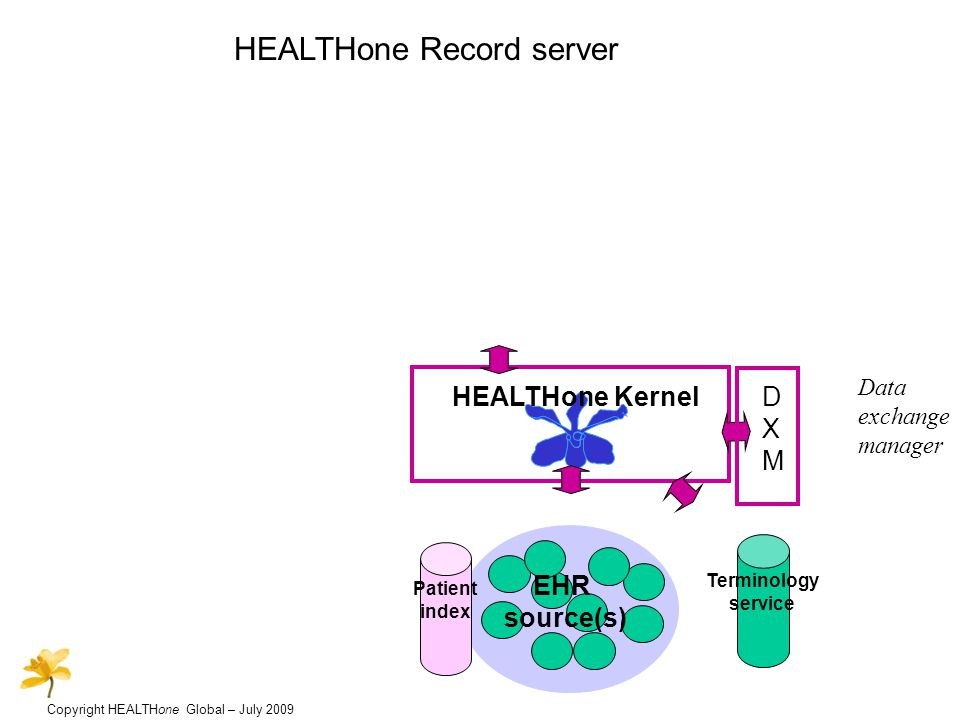 Copyright HEALTHone Global – July 2009 HEALTHone Record server HEALTHone Kernel EHR source(s) Terminology service DXMDXM Patient index Data exchange manager