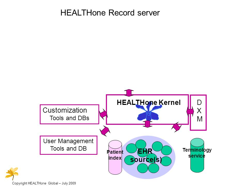 Copyright HEALTHone Global – July 2009 Customization customizable data entry tools –item editor –sequences –aggregates –forms customizable analysis tools –item analysis –complex analyses –tables and diagrams –views