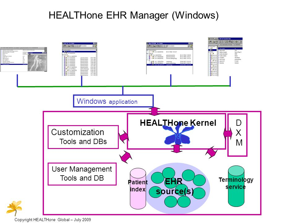 Copyright HEALTHone Global – July 2009 HEALTHone EHR Manager (Windows) Internet application User Management Tools and DB Customization Tools and DBs HEALTHone Kernel EHR source(s) Terminology service DXMDXM Patient index