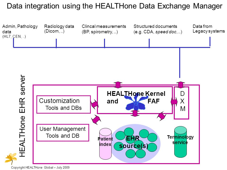 Copyright HEALTHone Global – July 2009 Data integration using the HEALTHone Data Exchange Manager Admin, Pathology data (HL7, CEN,..) Radiology data (Dicom,..) Structured documents (e.g.