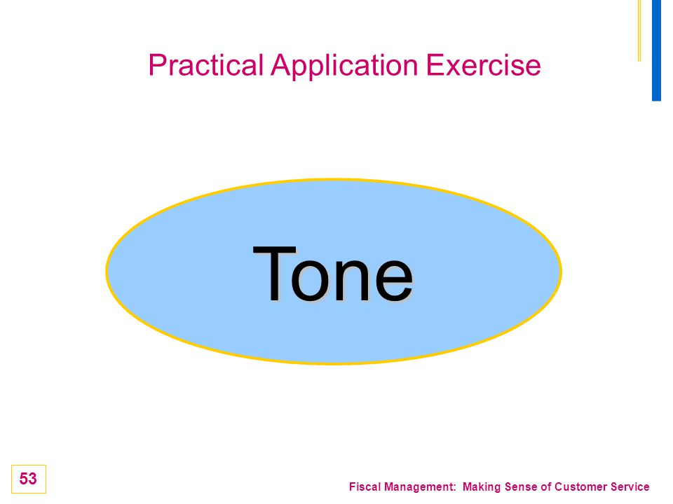 53 Fiscal Management: Making Sense of Customer Service Practical Application Exercise Tone