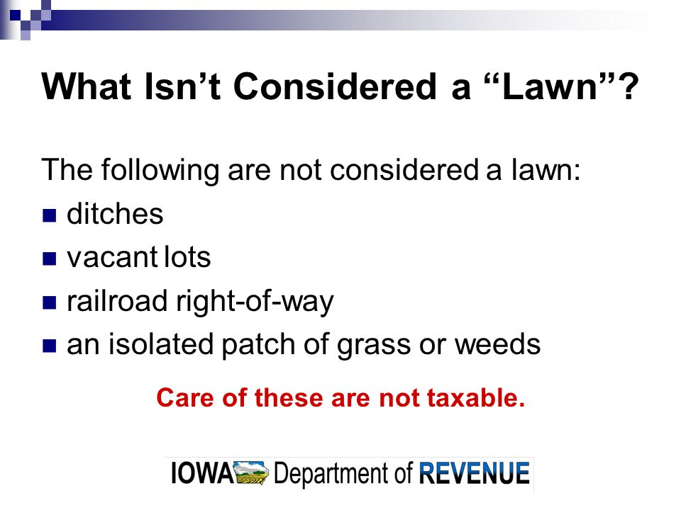 What Isnt Considered a Lawn.