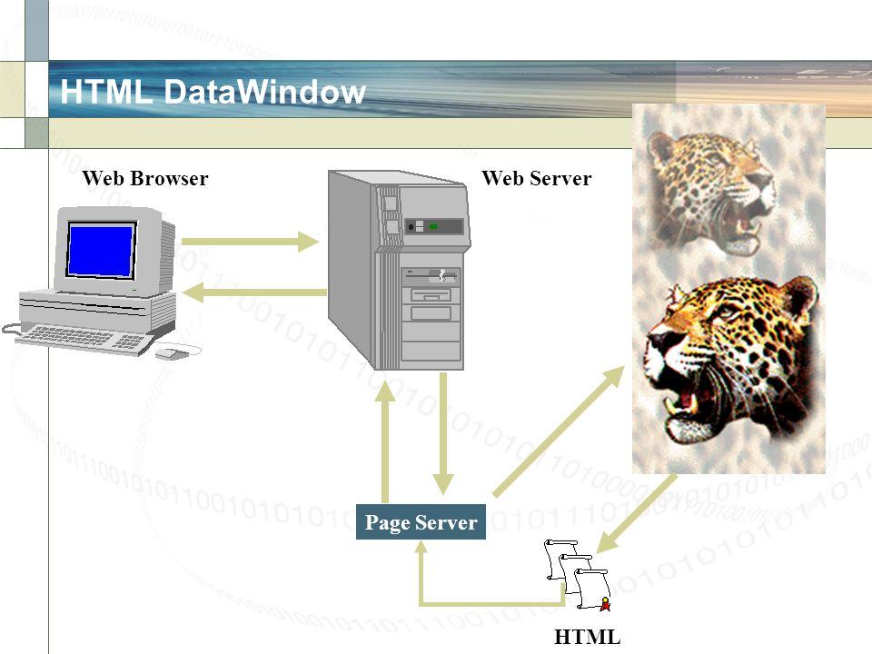 HTML DataWindow Web BrowserWeb Server Page Server HTML