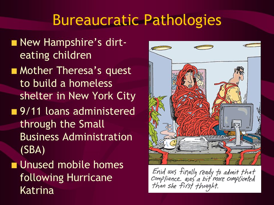Bureaucratic Pathologies New Hampshires dirt- eating children Mother Theresas quest to build a homeless shelter in New York City 9/11 loans administered through the Small Business Administration (SBA) Unused mobile homes following Hurricane Katrina