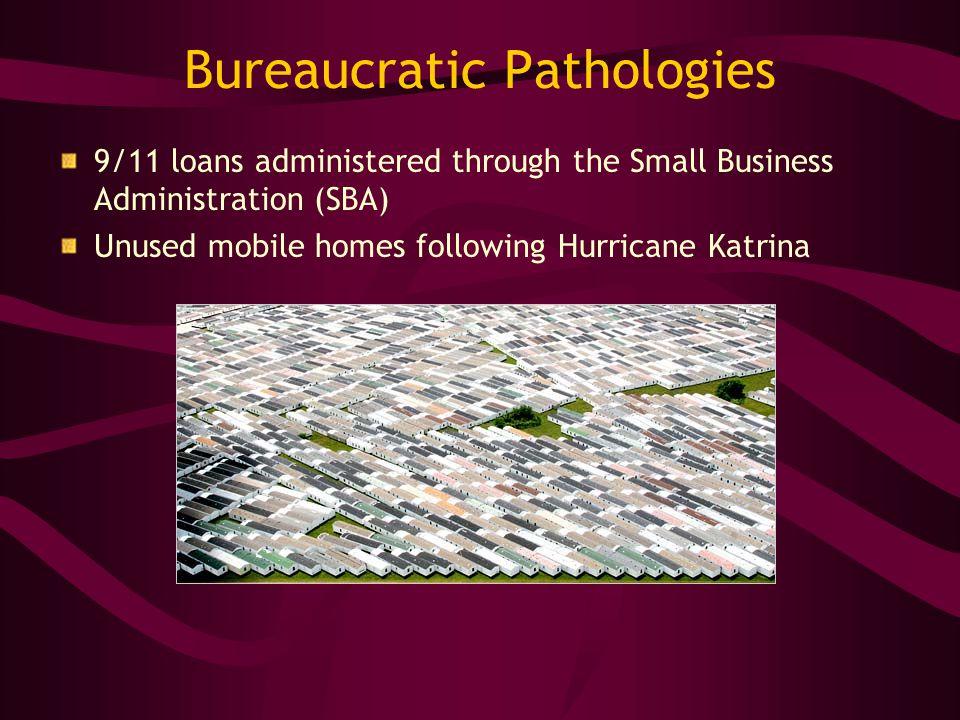 Bureaucratic Pathologies 9/11 loans administered through the Small Business Administration (SBA) Unused mobile homes following Hurricane Katrina