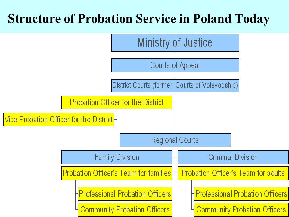 Status of Probation Officers Appointed officials Good salary Allowances for working in the field sick-leave for maximum 6 months Requirements: – Polish citizen – Full citizen rights – University degree (Law, Pedagogy, sociology, psychology)
