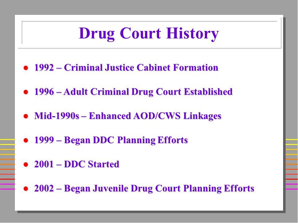 Drug Court History l 1992 – Criminal Justice Cabinet Formation l 1996 – Adult Criminal Drug Court Established l Mid-1990s – Enhanced AOD/CWS Linkages l 1999 – Began DDC Planning Efforts l 2001 – DDC Started l 2002 – Began Juvenile Drug Court Planning Efforts