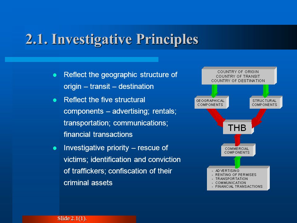 2.1. Investigative Principles Reflect the geographic structure of origin – transit – destination Reflect the five structural components – advertising;