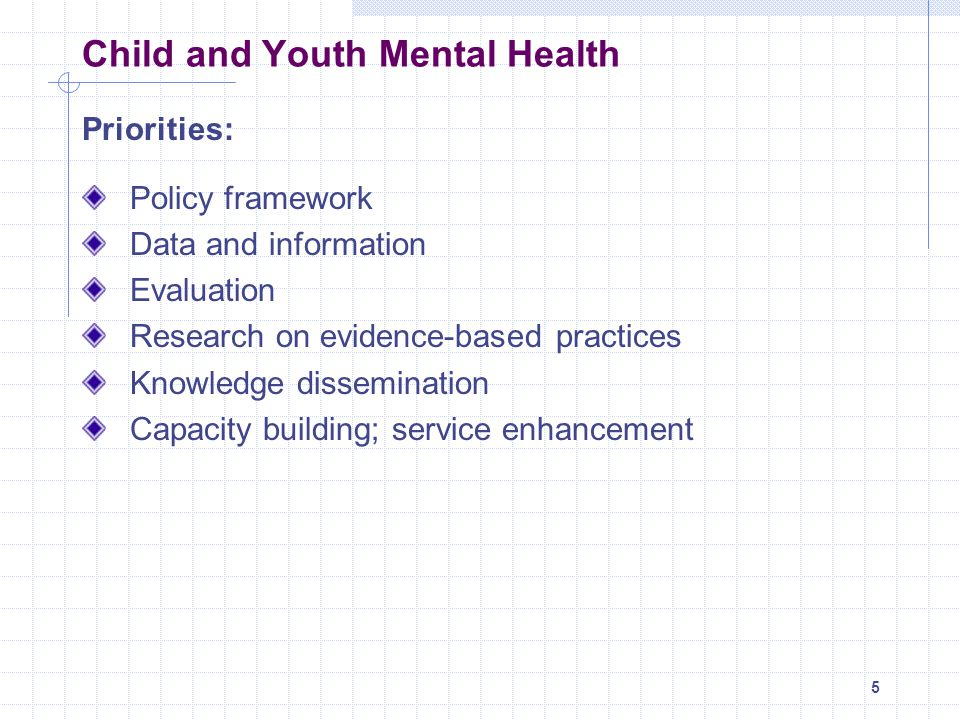 16 Overview - Key Elements Goal 4: A child and youth mental health sector that is accountable and well-managed Priority Areas for Action: 1.Enhance the formal system of accountability between government and the child and youth mental health sector 2.Build on outcome data to guide continuous sector improvements and to track child and youth outcomes 3.Identify and develop service standards, guidelines and outcome measures in accordance with the priorities outlined in the framework