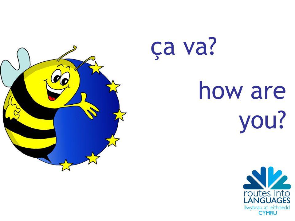 ça va? how are you?