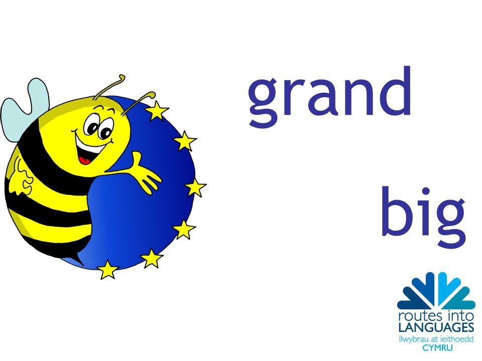grand big