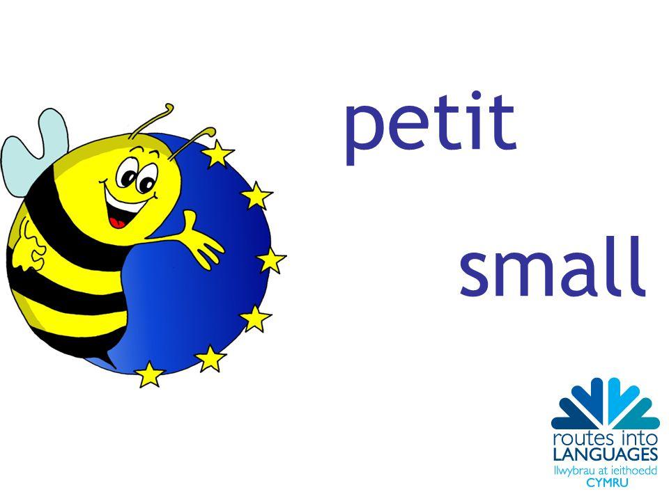 petit small