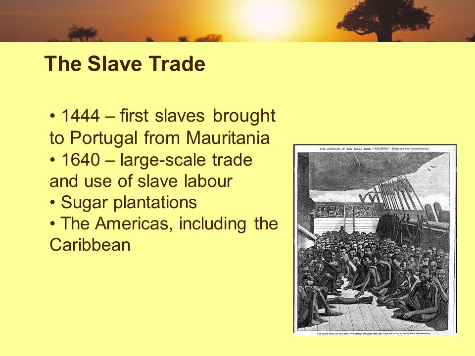 1444 – first slaves brought to Portugal from Mauritania 1640 – large-scale trade and use of slave labour Sugar plantations The Americas, including the Caribbean The Slave Trade