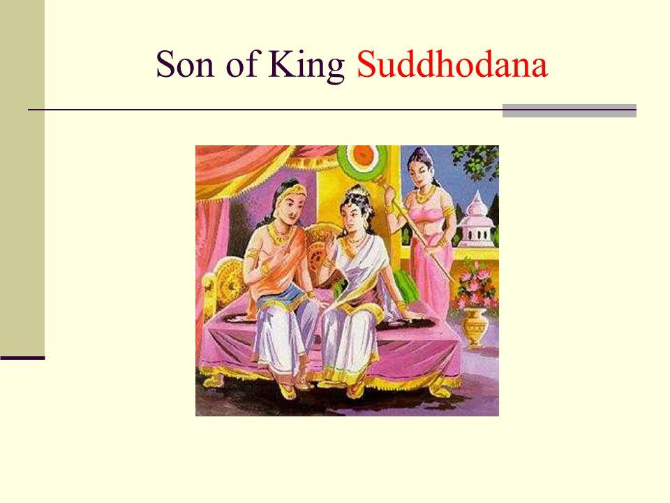 Son of King Suddhodana