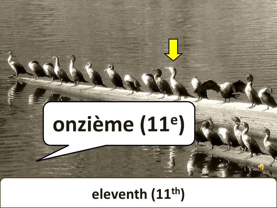tenth (10 th ) dixième (10 e )