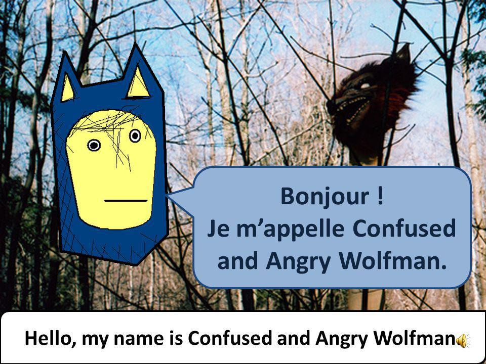The Angry Family Mr. Confused and Angry Wolfman