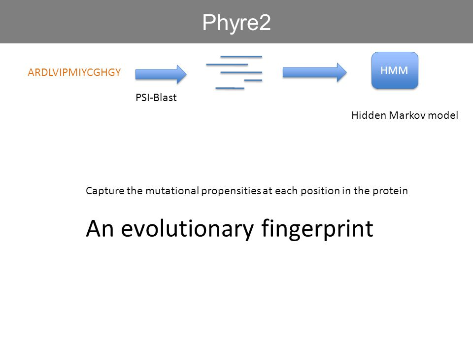 ARDLVIPMIYCGHGY HMM PSI-Blast Phyre2 Hidden Markov model Capture the mutational propensities at each position in the protein An evolutionary fingerprint