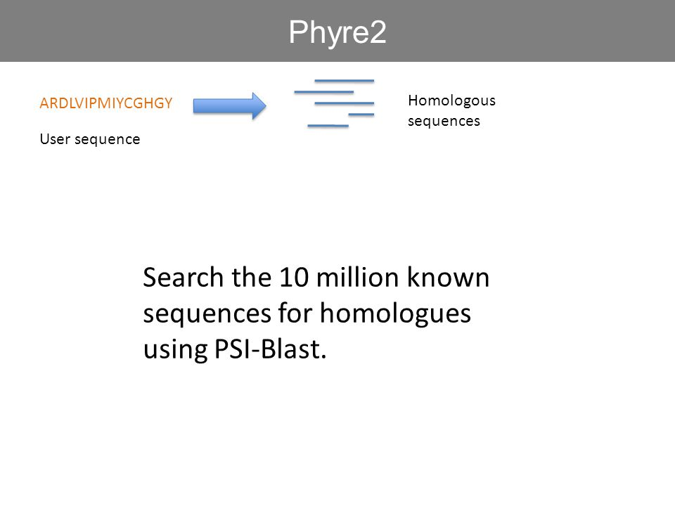 ARDLVIPMIYCGHGY Search the 10 million known sequences for homologues using PSI-Blast.