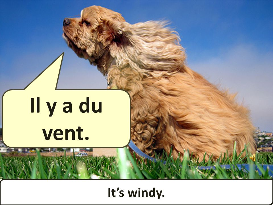 Its windy. Il y a du vent.