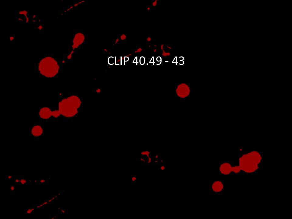 CLIP 40.49 - 43
