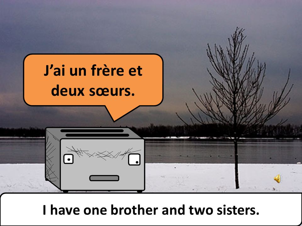 Jai un frère et deux sœurs. I have one brother and two sisters.