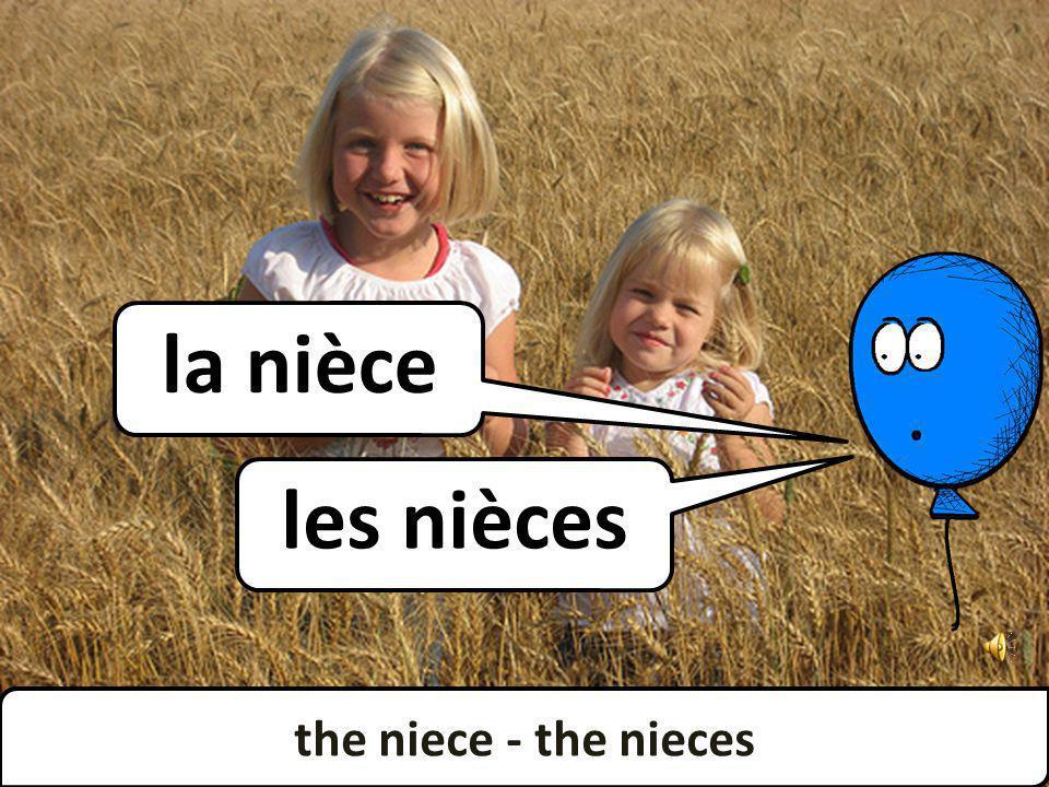 the niece - the nieces les nièces la nièce the niece - the nieces