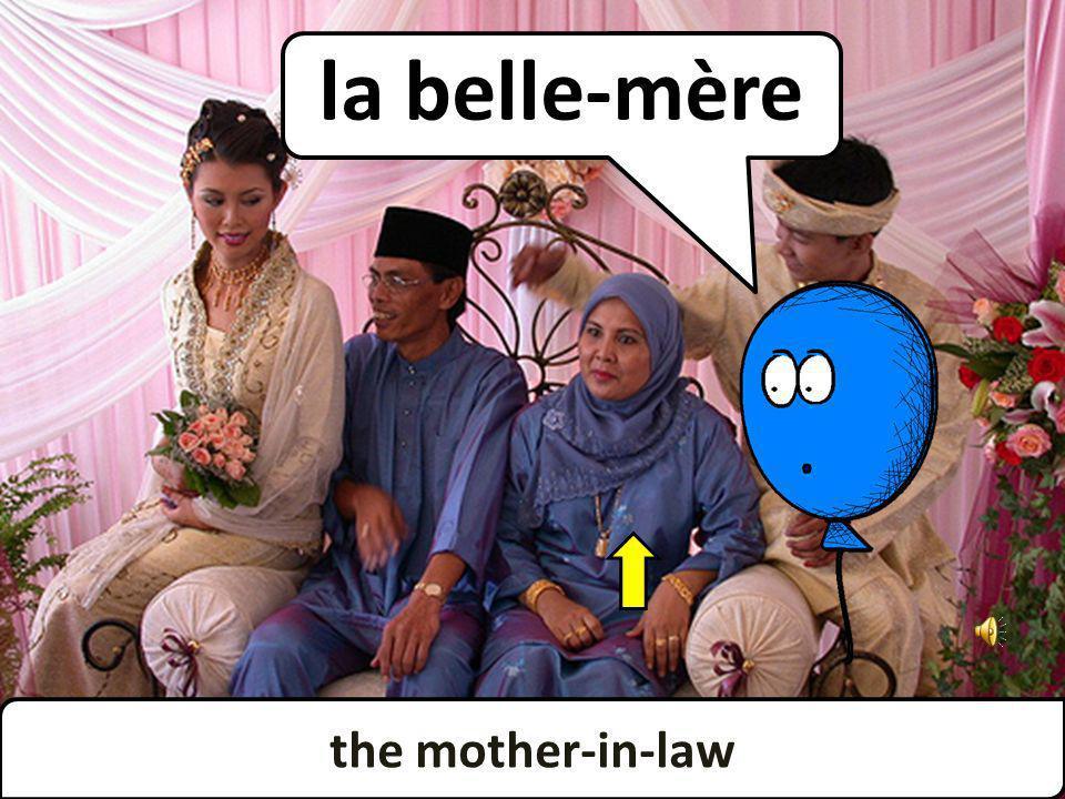 the mother-in-law la belle-mère