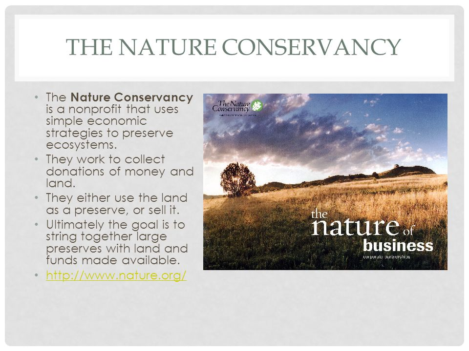 THE NATURE CONSERVANCY The Nature Conservancy is a nonprofit that uses simple economic strategies to preserve ecosystems. They work to collect donatio