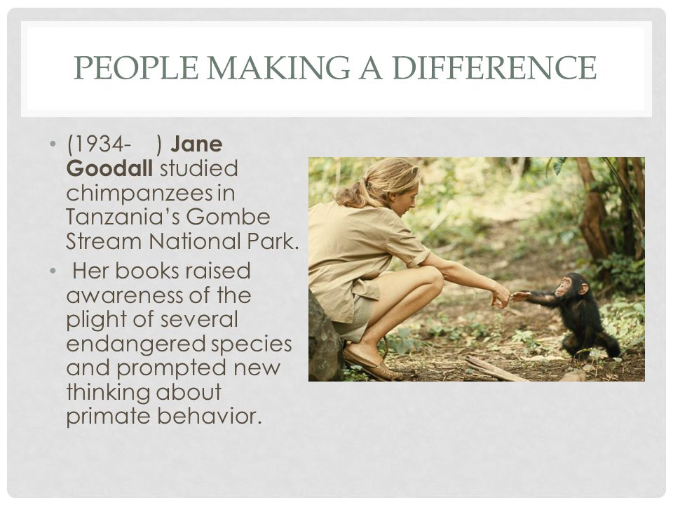 PEOPLE MAKING A DIFFERENCE (1934- ) Jane Goodall studied chimpanzees in Tanzanias Gombe Stream National Park. Her books raised awareness of the plight