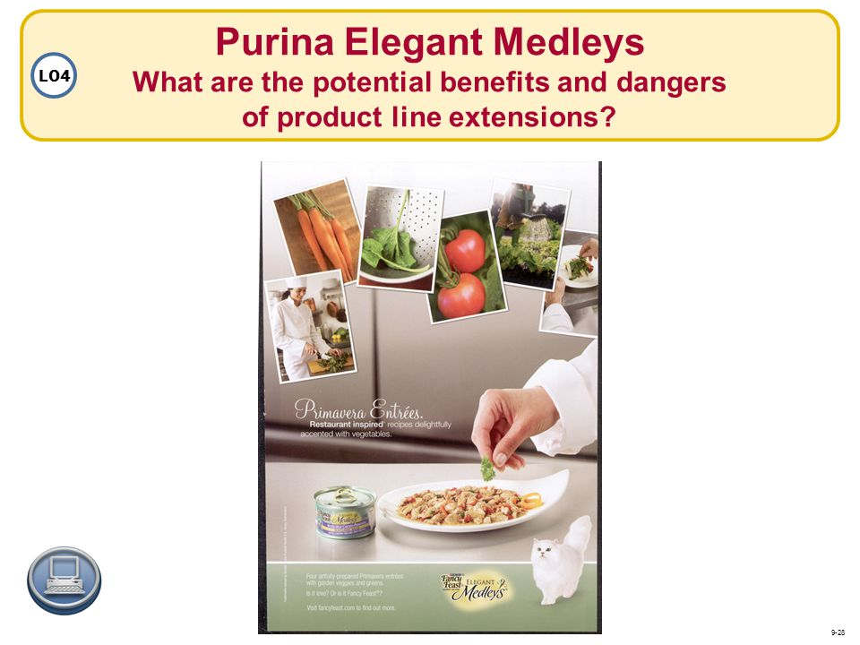 Purina Elegant Medleys What are the potential benefits and dangers of product line extensions? LO4 9-28