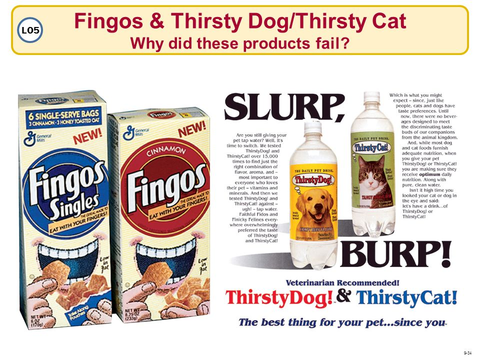 Fingos & Thirsty Dog/Thirsty Cat Why did these products fail? LO5 9-34