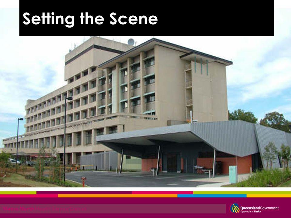 Metro North Health Service District Setting the Scene