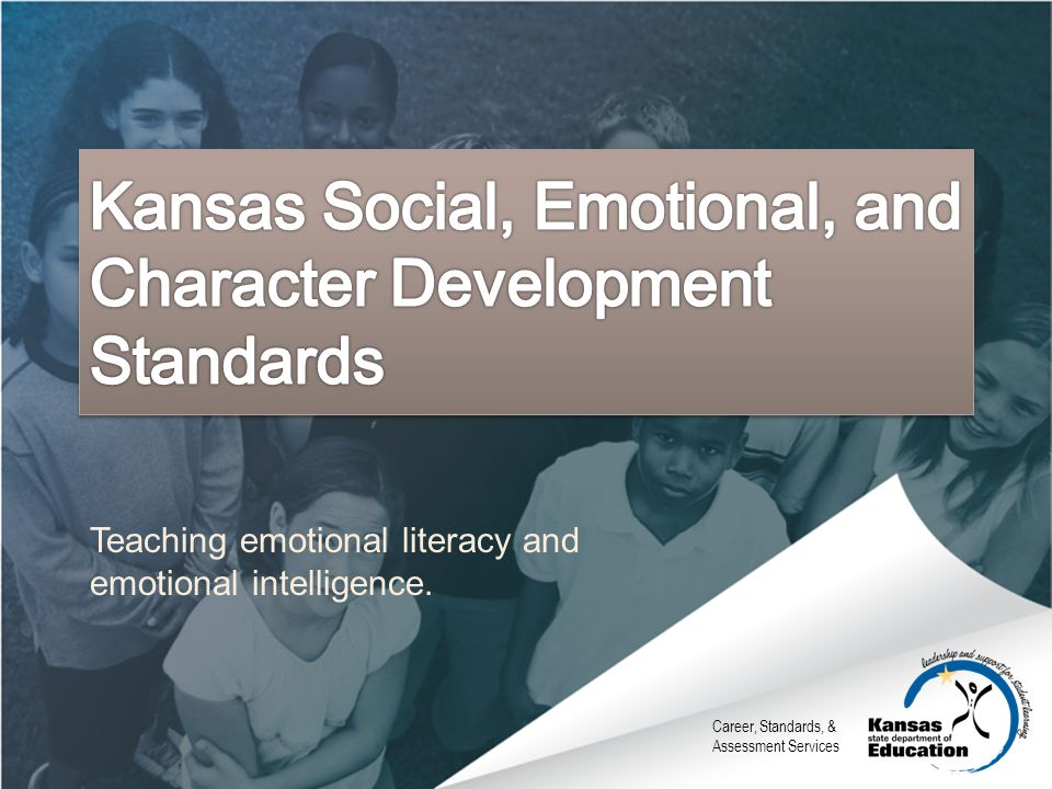Teaching emotional literacy and emotional intelligence.