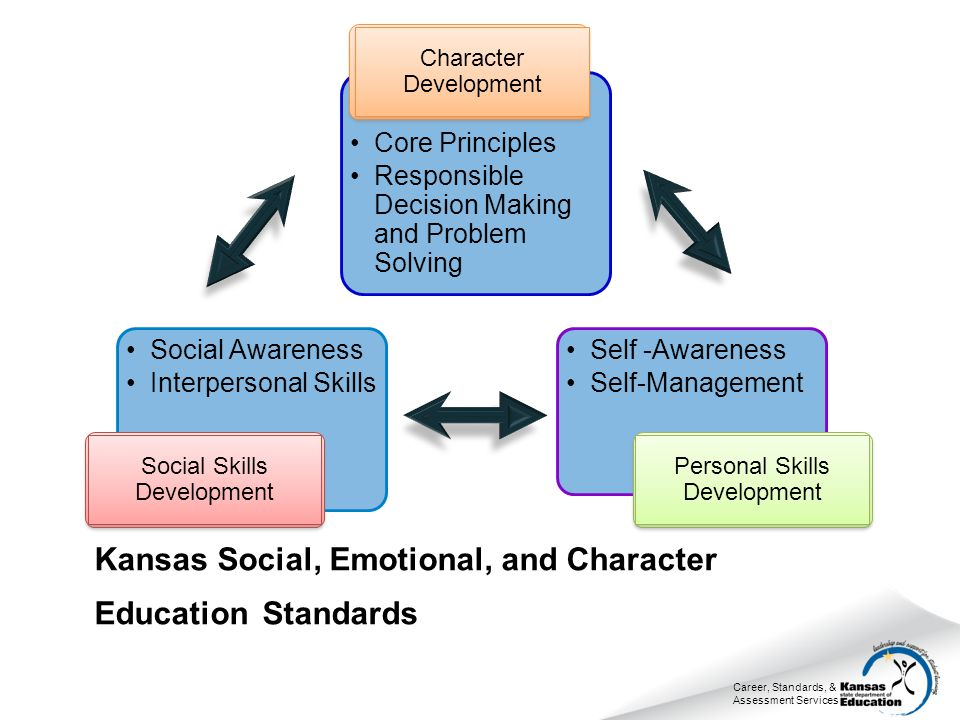 Career, Standards, & Assessment Services Social Awareness Interpersonal Skills Social Skills Development Core Principles Responsible Decision Making a
