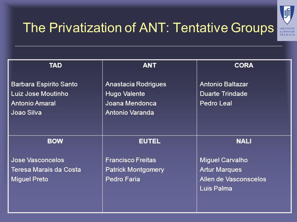 The Privatization of ANT: Tentative Groups TAD Barbara Espirito Santo Luiz Jose Moutinho Antonio Amaral Joao Silva ANT Anastacia Rodrigues Hugo Valent