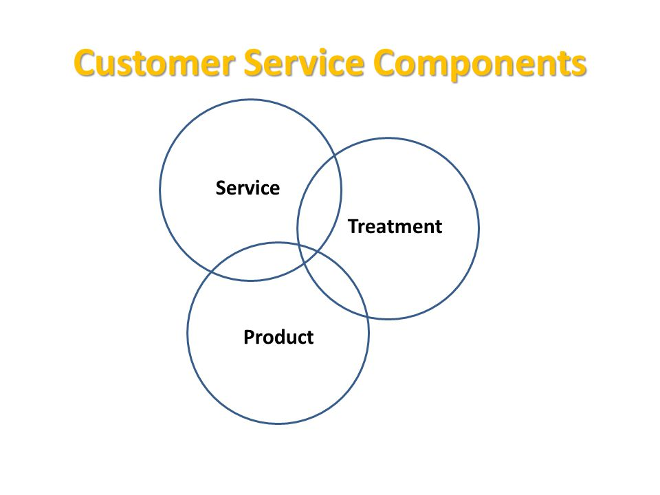 Customer Service Components Treatment Service Product