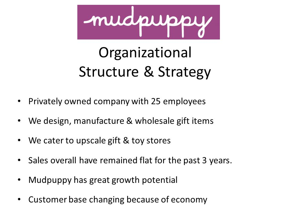 Organizational Structure & Strategy Privately owned company with 25 employees We design, manufacture & wholesale gift items We cater to upscale gift &