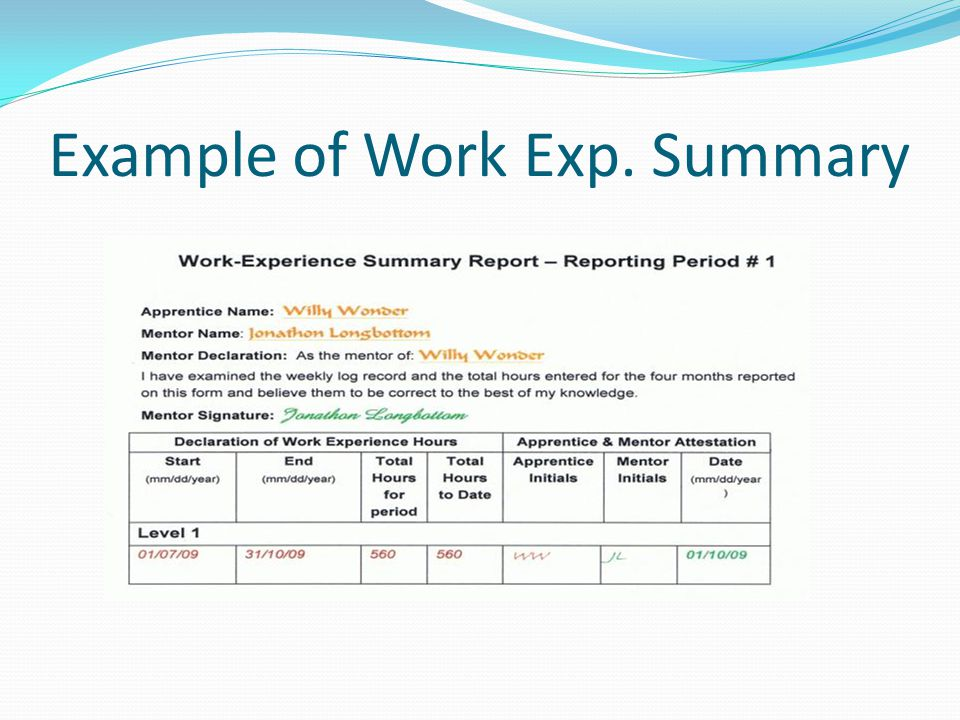 Example of Work Exp. Summary