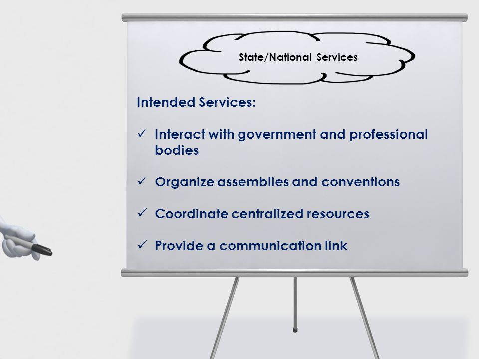 Intended Services: Interact with government and professional bodies Organize assemblies and conventions Coordinate centralized resources Provide a com