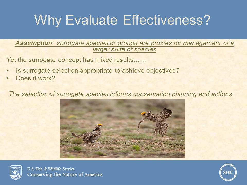 U.S.Fish & Wildlife Service Conserving the Nature of America Why Evaluate Effectiveness.