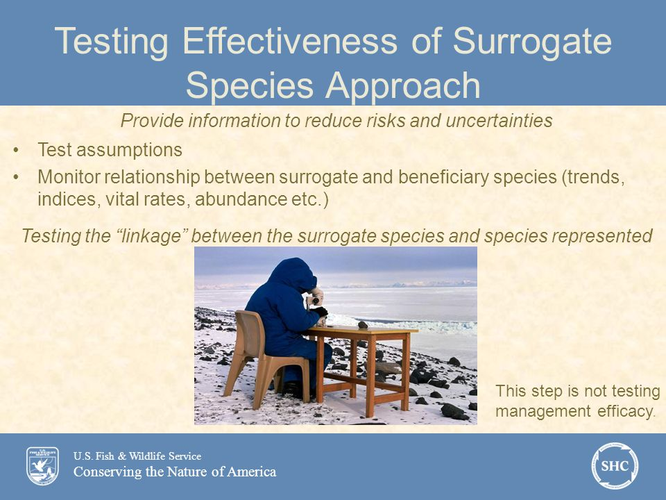 U.S. Fish & Wildlife Service Conserving the Nature of America Testing Effectiveness of Surrogate Species Approach Provide information to reduce risks