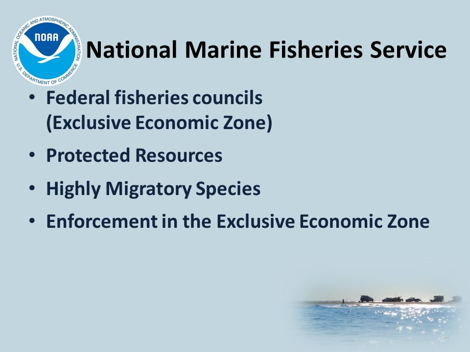 National Marine Fisheries Service Federal fisheries councils (Exclusive Economic Zone) Protected Resources Highly Migratory Species Enforcement in the Exclusive Economic Zone