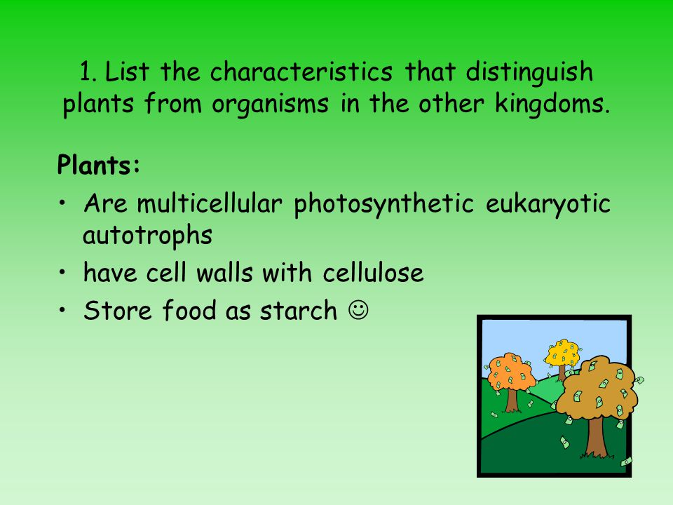 1.List the characteristics that distinguish plants from organisms in the other kingdoms.