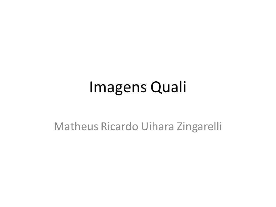 Imagens Quali Matheus Ricardo Uihara Zingarelli